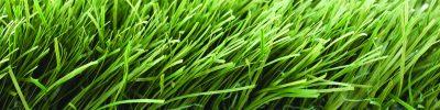 Исскуственное газонное покрытие (мягкое)